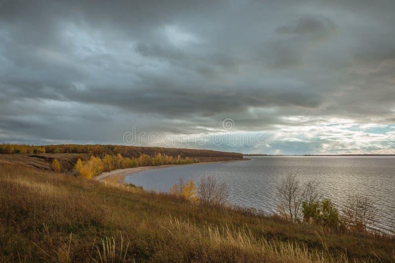 Żółci jesieni drzewa nad szarą rzeką obrazy royalty free