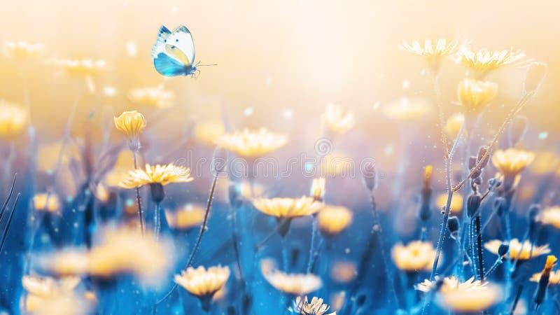 Żółci lasów kwiaty i błękitny motyl na tle błękitów trzony i liście Artystyczny naturalny makro- wizerunek obraz royalty free