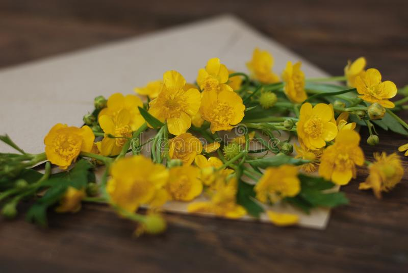 Żółci Mali kwiaty w Kopertowym Nieociosanym Drewnianym tło sztandaru mieszkaniu Lay fotografia stock