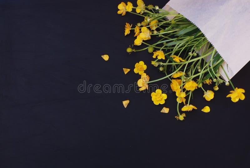 Żółci Mali kwiaty w Kopertowym zmroku - błękitnego czerni tła mieszkania Lay kopii przestrzeń fotografia stock