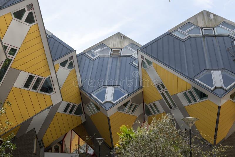 Żółci sześcianów domy, Rotterdam, Holandia fotografia royalty free