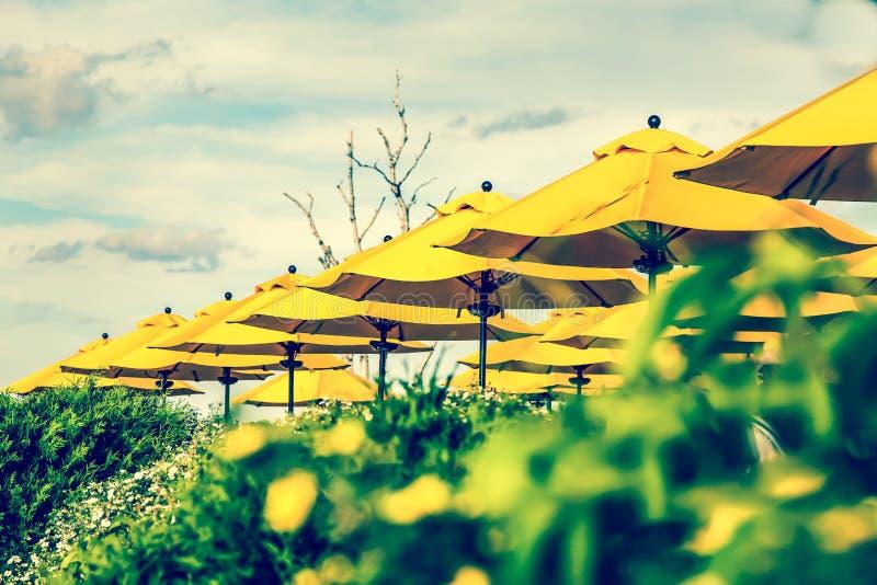 Żółci umbreallas z przecinającymi proces kolorami fotografia royalty free
