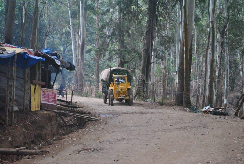 Żółta ciężarówka w lasach zdjęcie stock