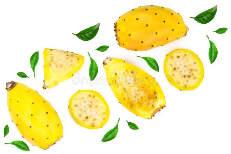 Żółta kłująca bonkreta lub opuntia odizolowywający na białym tle dekorującym z zielonymi liśćmi Odgórny widok Mieszkanie nieatuto obrazy royalty free