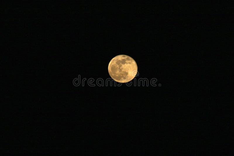 Żółta księżyc w pełni w ciemnym niebie obraz stock