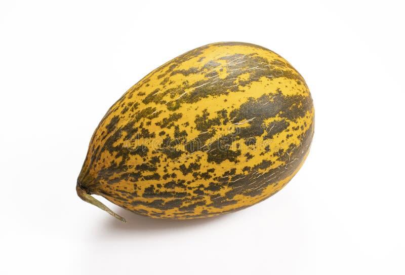 Żółta melonowa owoc, odosobniony biały tło fotografia royalty free