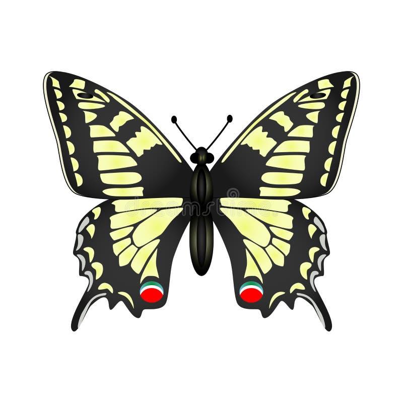 Żółta motylia wektorowa ilustracja odizolowywająca na białym backgroun royalty ilustracja