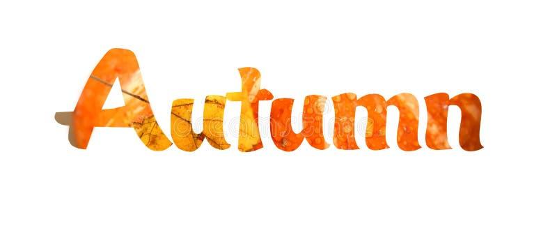 Żółta słowo jesień royalty ilustracja