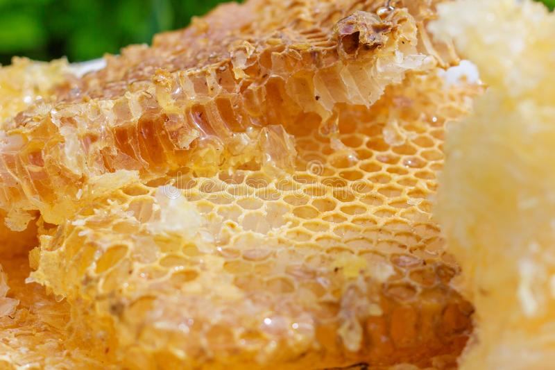 Żółte honeycomb komórki fotografia stock