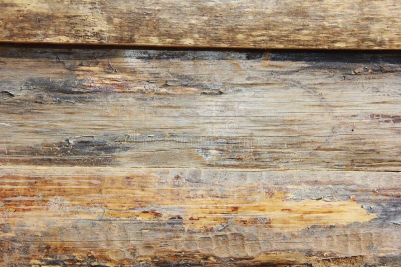 Żółtego brązu drewnianej deski tekstura z pęknięciami, plamami i narysami, zdjęcie royalty free