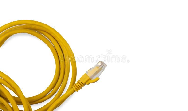 Żółty coiled łata sznur odizolowywający na białym tle zdjęcie stock