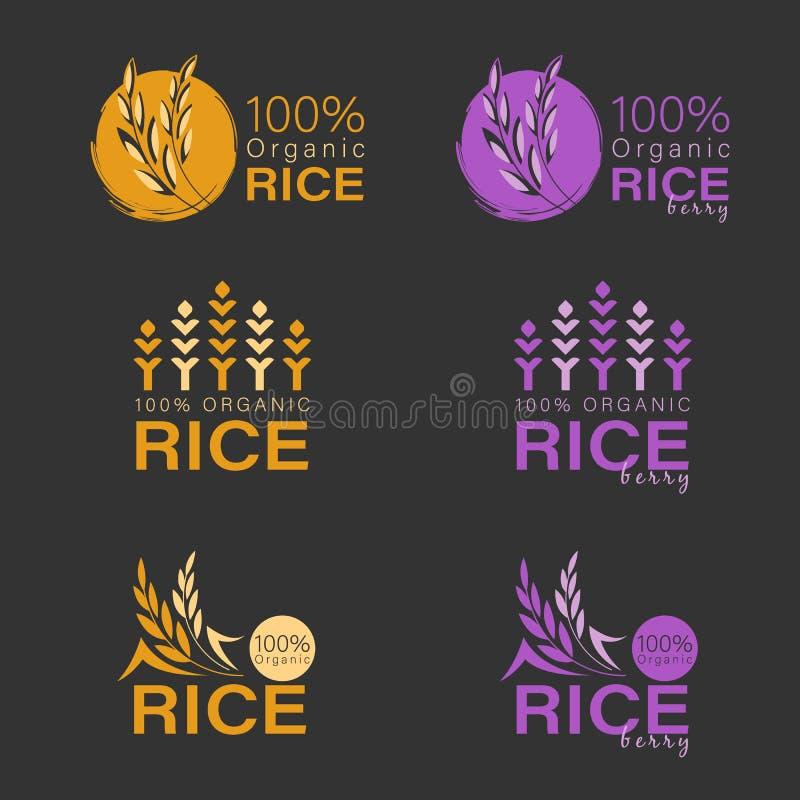 Żółty irlandczyków ryż i ryżu logo jagodowego znaka wektorowy projekt ilustracja wektor