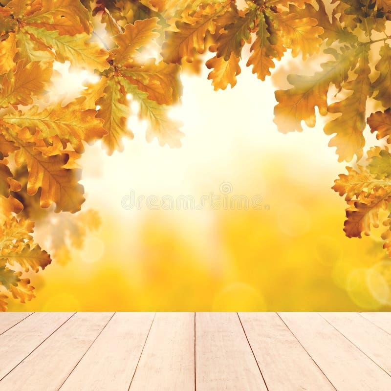 Żółty jesieni tło z bielu pustym drewnianym stołem i spadków dębowymi liśćmi ilustracja wektor