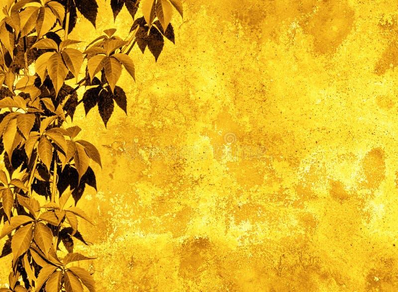 Żółty kwiecisty tło obraz royalty free