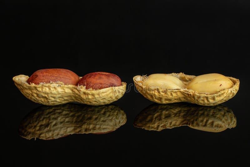Żółty naturalny arachid odizolowywający na czarnym szkle obraz stock