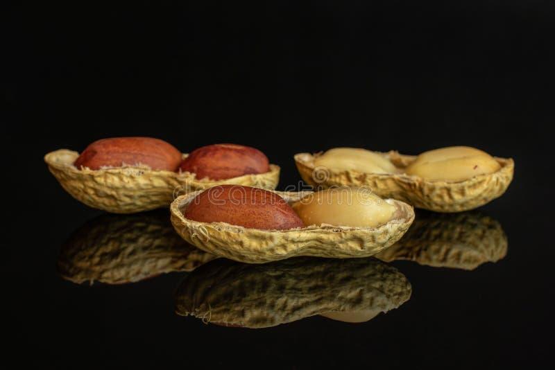 Żółty naturalny arachid odizolowywający na czarnym szkle zdjęcia stock