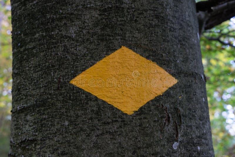 Żółty wycieczkuje znak na drzewie w lesie zdjęcia stock