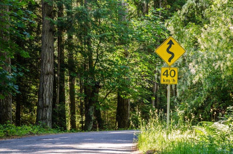 Żółty znak ostrzegawczy Z prędkości ograniczeniem na Lasowej drodze obraz royalty free