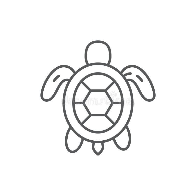 Żółwia morze, oceanu akwarium i przyroda morskiego zwierzęcia konturu editable ikona lub royalty ilustracja