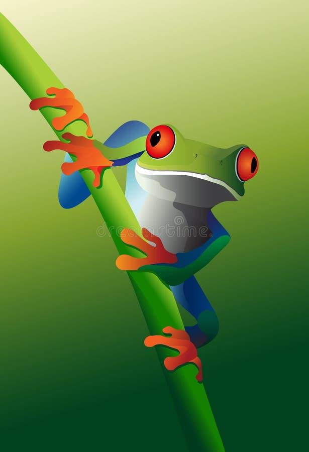 żaba przyglądający się winograd czerwony drzewny royalty ilustracja