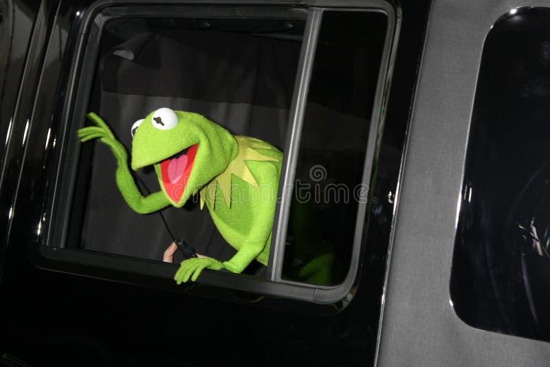 żaby Kermit muppets zdjęcie royalty free