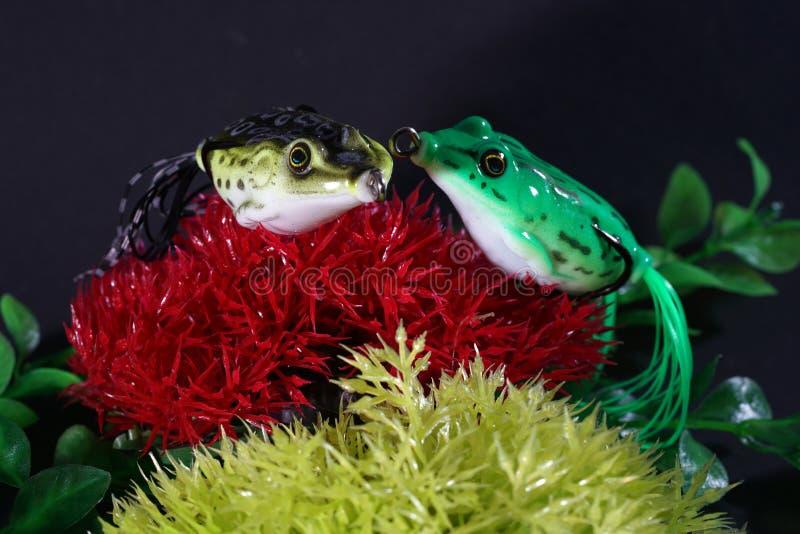 Żaby robić klingeryt z ostrymi haczykami są dobrze - nadają się zdjęcia royalty free