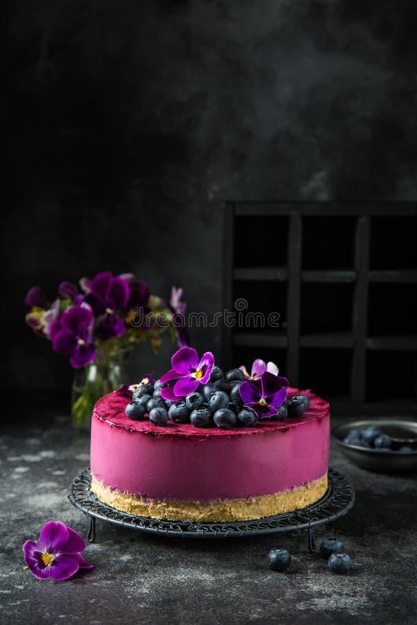 Żadny piec czarnej jagody cheesecake na ciemnym tle obraz stock