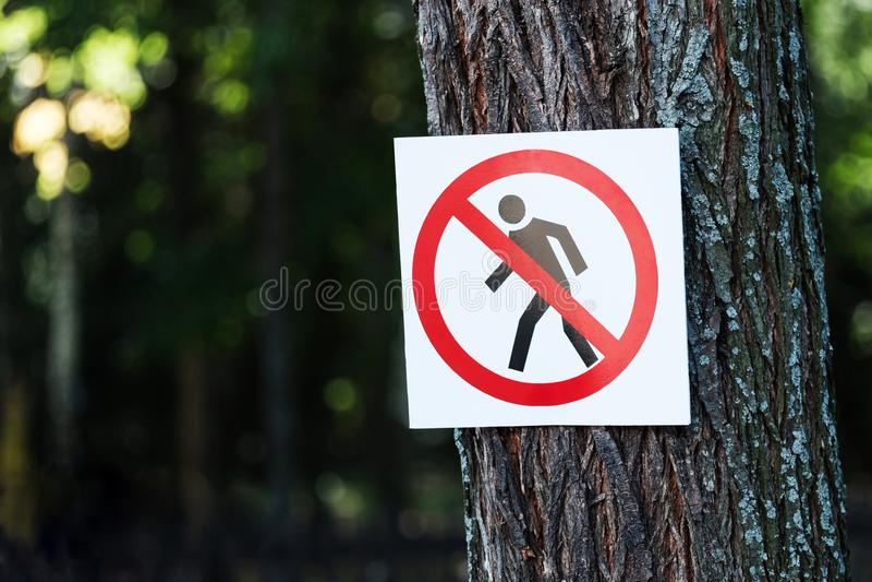 Żadny wejście - szyldowy obwieszenie na drzewie zdjęcie royalty free