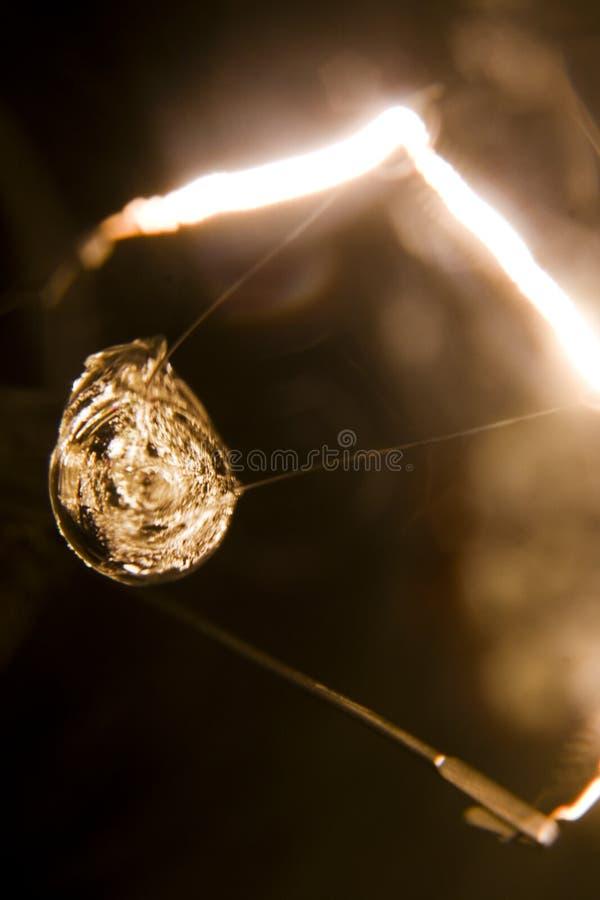 żarówki światła macro obrazy stock