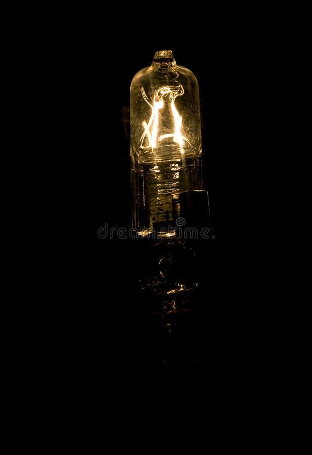 żarówki drucika światło zdjęcia royalty free