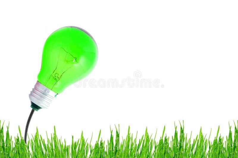 żarówki energii zieleń zdjęcie stock