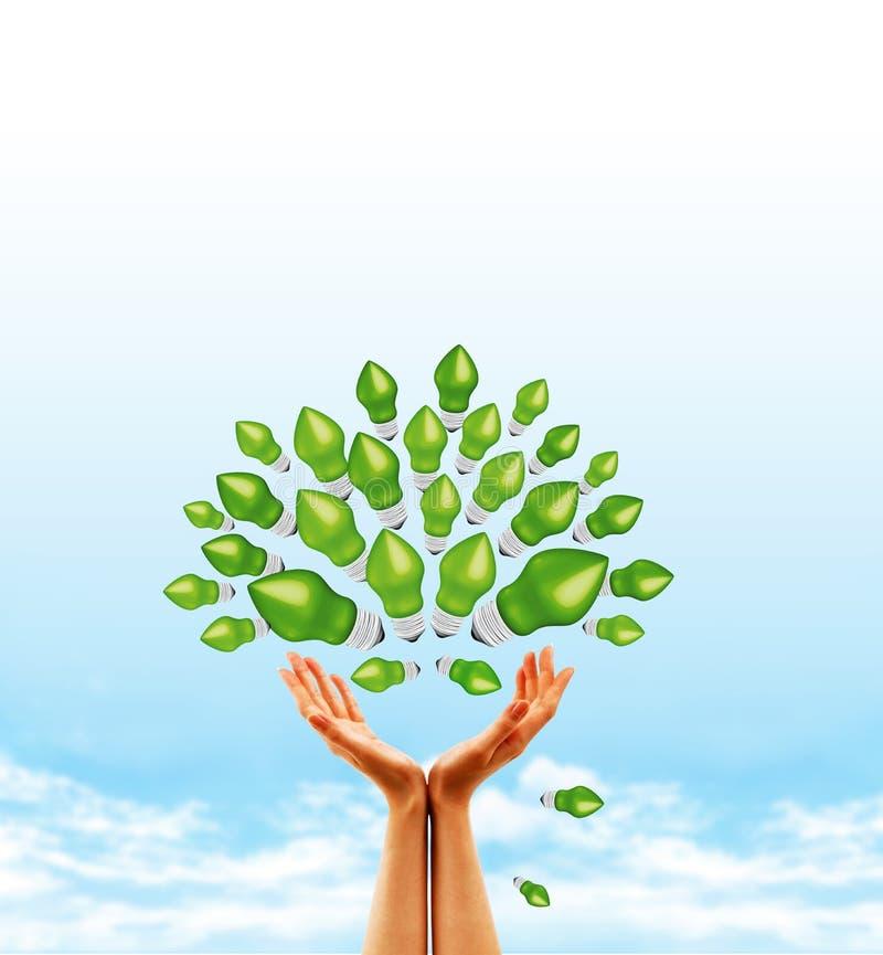 żarówki pojęcia drzewo zdjęcie royalty free
