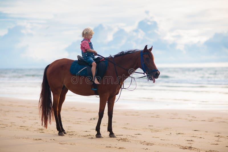 Żartuje jeździeckiego konia na plaży Dziecko przeja?d?ki konie fotografia stock