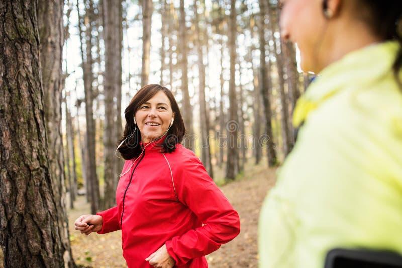 Żeńscy biegacze z słuchawkami jogging outdoors w lesie fotografia stock