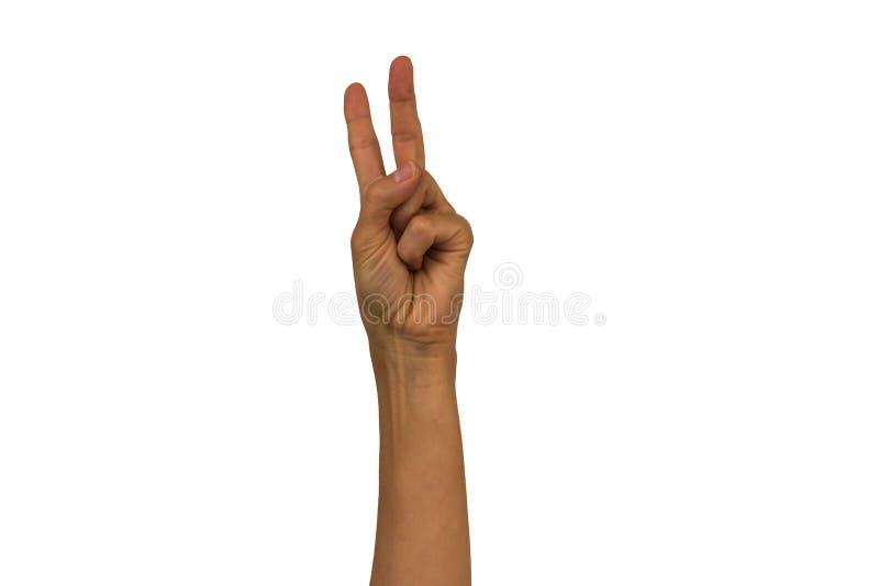 Żeńska ręka na białym tle pokazuje różnych gesty Isol fotografia royalty free