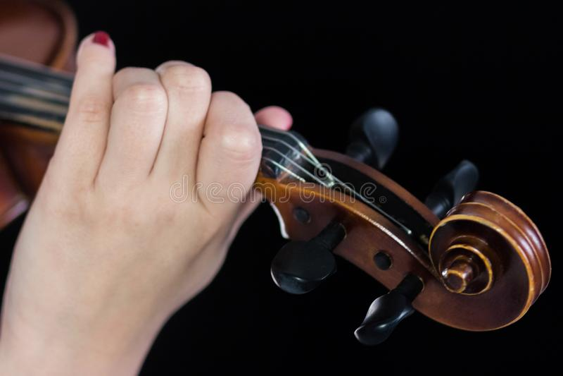 Żeńska ręka na fretboard skrzypce Palce zaciskają sznurki Dla sprawozdania muzyczna wiadomość z bliska Czarny tło fotografia stock