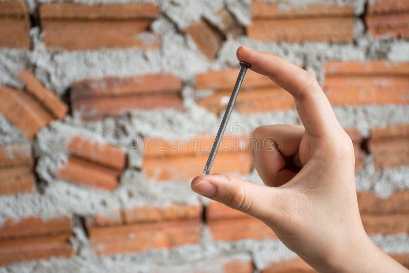 Żeńska ręka trzyma budowa gwóźdź z ściana z cegieł backgrou obraz stock
