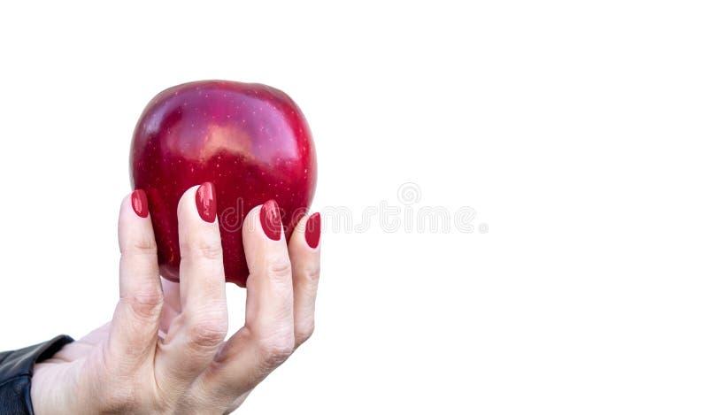 Żeńska ręka trzyma czerwonego jabłczanego zbliżenie fotografia royalty free