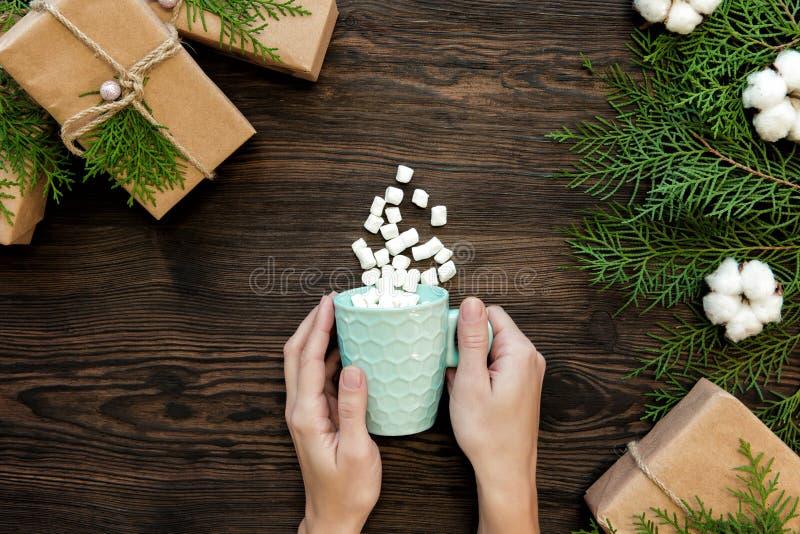 Żeńska ręka trzyma filiżankę czekolada z marshmallow obraz royalty free