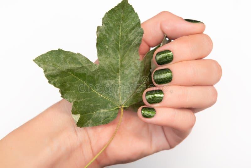 Żeńska ręka z zielony mienie spadać gwoździa projekta liściem obraz royalty free