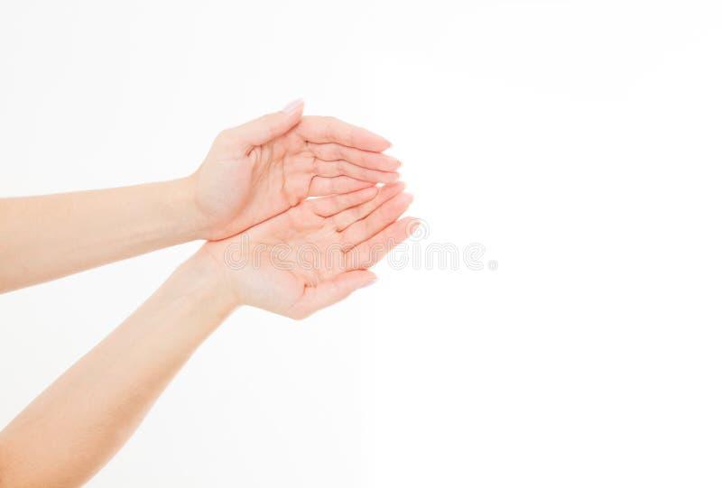 Żeńska ręki dwa palma up handbreadth odizolowywający na białym tle Frontowy widok Egzamin próbny Up kosmos kopii szablon blank zdjęcie royalty free
