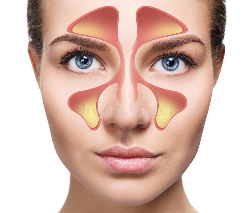 Żeńska twarz pokazuje nosowego sinus z zimnem nad białym tłem fotografia stock