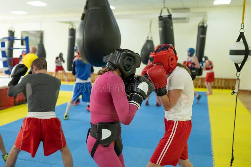 Żeński bokserski wojowników ćwiczyć zdjęcie stock