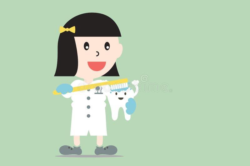 Żeński dentysta demonstruje szczotkować używać ząb modeluje, stomatologiczna opieka ilustracja wektor