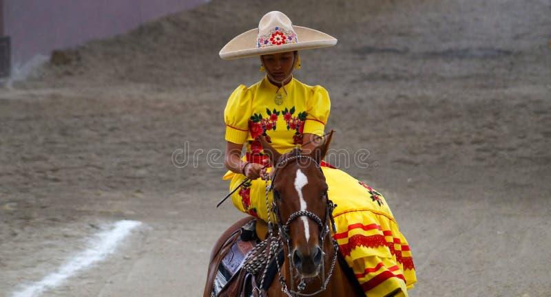 Żeński jeździec w kolor żółty sukni mieniu ogranicza obraz stock