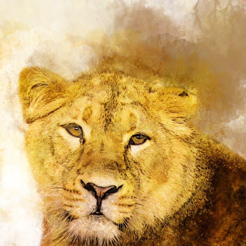 Żeński lew w akwareli, drapieżnik royalty ilustracja