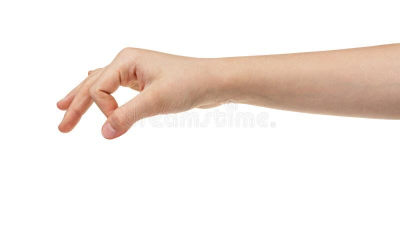 Żeński nastoletni ręki mienie coś fotografia royalty free