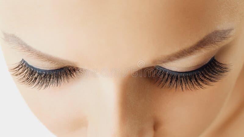 Żeński oko z ekstremum tęsk sztuczne rzęsy Rzęs rozszerzenia, makijaż, kosmetyki, piękno i skóry opieka, obraz royalty free