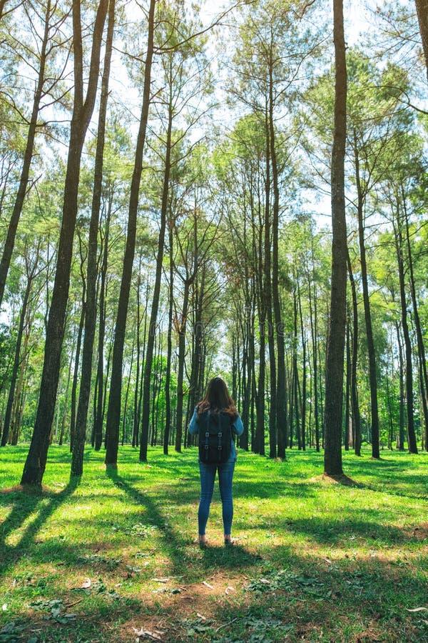 Żeński podróżnik i plecak trwanie z powrotem i patrzejący w pięknych sosnowych drewna obraz royalty free
