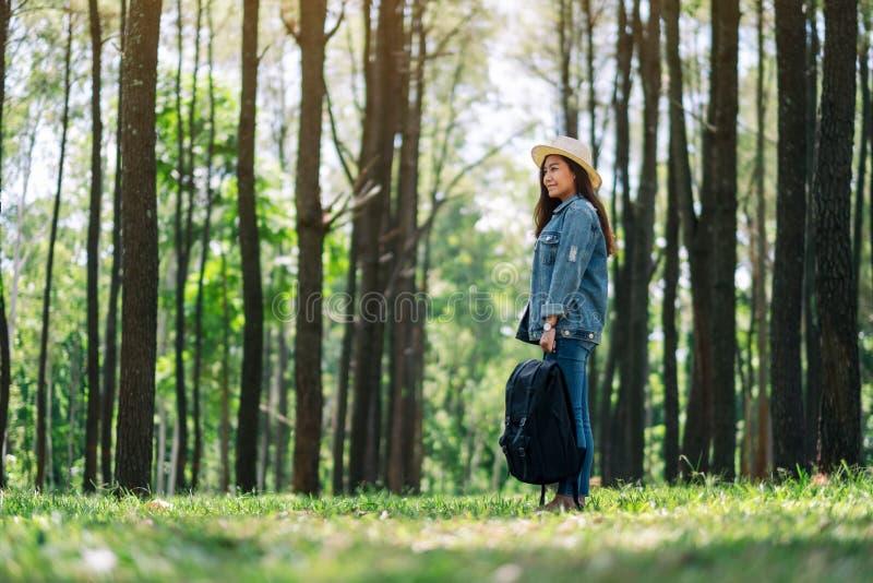 Żeński podróżnik patrzeje w pięknych sosnowych drewna z plecakiem i kapeluszem zdjęcia stock